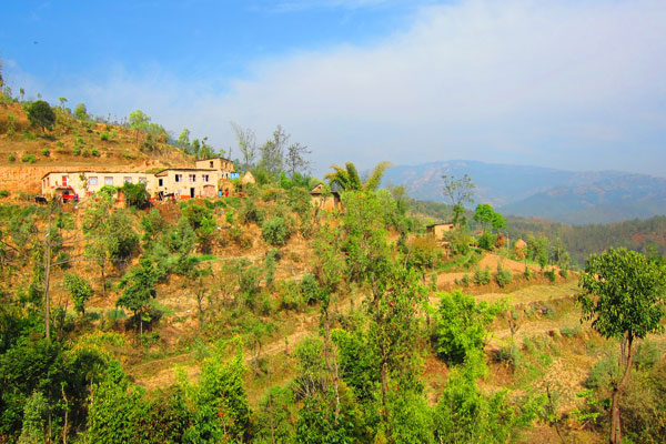 Coffee farming village in Kavrepalanchok Nepal